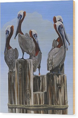 Pelicans Five Wood Print by Phyllis Beiser