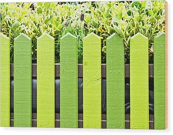 Picket Fence Wood Print by Tom Gowanlock