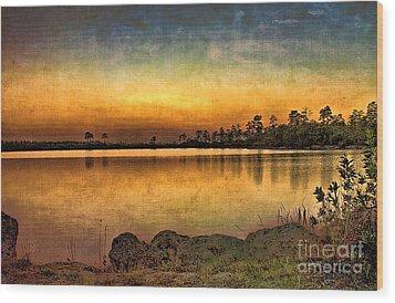 Pine Glades Lake Wood Print by Anne Rodkin