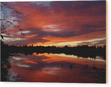 Wood Print featuring the photograph Riparian Sunset by Tam Ryan