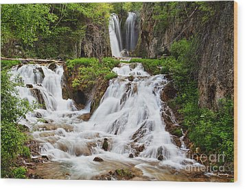 Roughlock Falls Wood Print