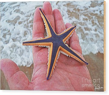 Wood Print featuring the photograph Royal Starfish - Ormond Beach Florida by Melissa Sherbon