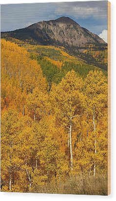 San Juan Mountains In Autumn Wood Print by Jetson Nguyen