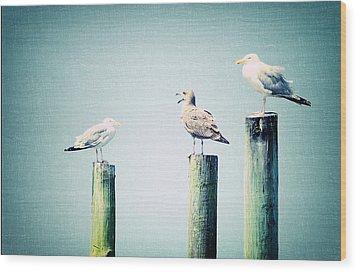 3 Seal Gulls Wood Print by Dick Wood