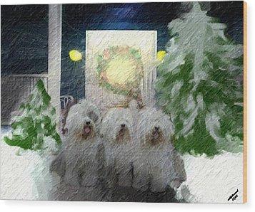 3 Sheepdogs Wood Print