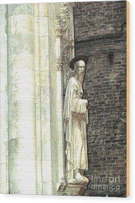 Siena Sculpture Wood Print by Ted Pollard