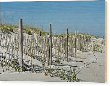 Snow Fence Wood Print by Denis Lemay