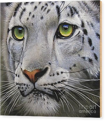 Snow Leopard Wood Print by Jurek Zamoyski