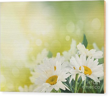 Spring Background Wood Print by Mythja  Photography