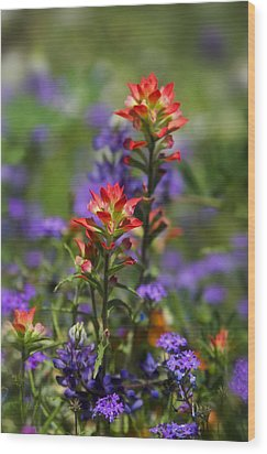 Spring Flowers  Wood Print by Saija  Lehtonen