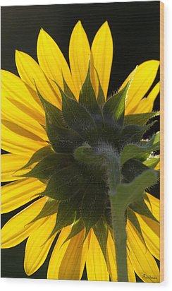 Sunshine Wood Print by Michael Friedman