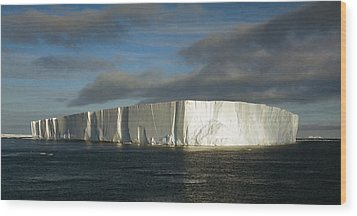 Tabular Iceberg Antarctica Wood Print by Carole-Anne Fooks