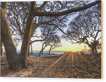 The Reach Wood Print by Debra and Dave Vanderlaan