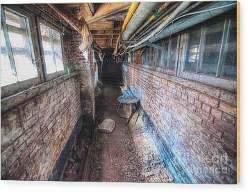 Urban Decay - Saint Elizabets  Wood Print by Dem Wolfe