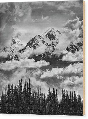 Usa, Washington State, Olympic National Wood Print