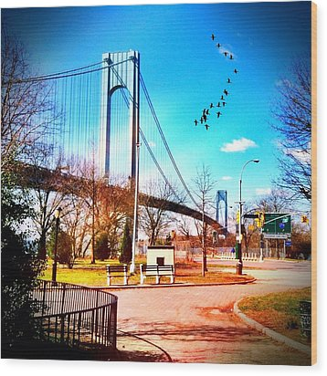 Verrazano Narrows Bridge Wood Print by Frank Winters