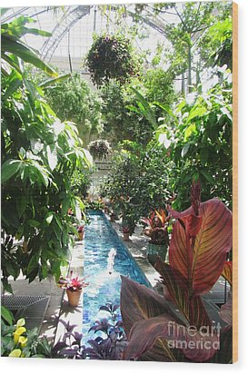 Washington Dc  Botanical Garden Wood Print