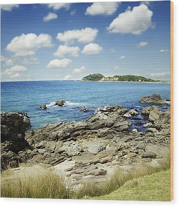 New Zealand Wood Print by Les Cunliffe