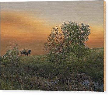 3241 Wood Print