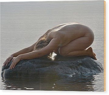 3427 Nude On Lake Superior Rock  Wood Print by Chris Maher