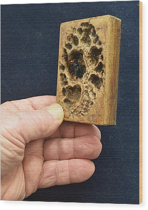 3d Aceo Wood Print by Roger Swezey