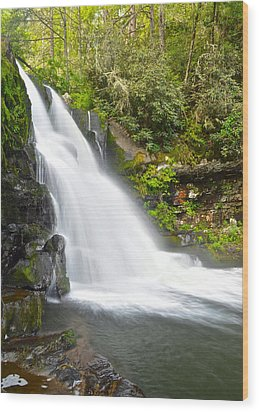 Abrams Falls Wood Print by Frozen in Time Fine Art Photography