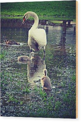 All In The Family Wood Print by Cyryn Fyrcyd