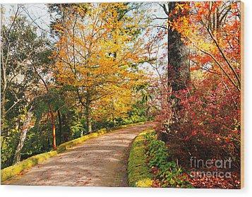 Autumn Colors Wood Print by Gaspar Avila