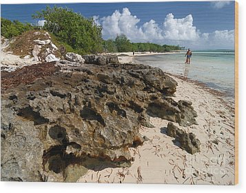 Beach At Coco Cay Wood Print by Amy Cicconi