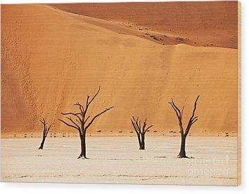 Dead Vlei In Namib Desert Wood Print by Juergen Ritterbach
