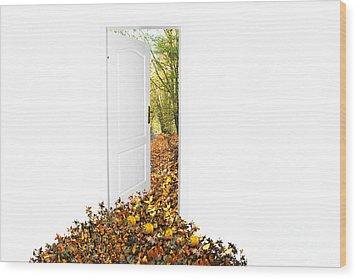 Door To New World Wood Print by Michal Bednarek