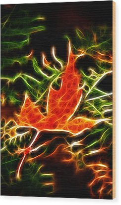 Fractal Maple Leaf Wood Print by Andre Faubert