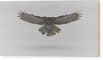Great Grey Owl In Flight Wood Print