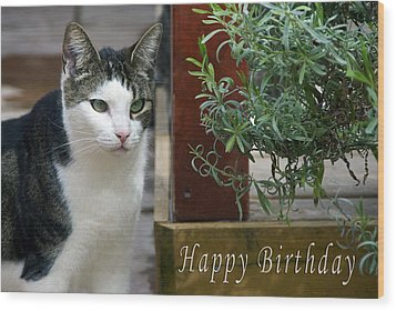 Happy Birthday Wood Print by Michele Wright