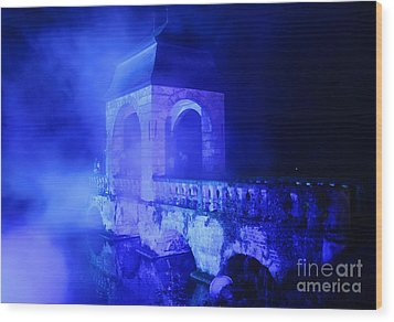 Illumina Light Show At Schloss Dyck Germany Wood Print by David Davies