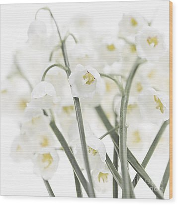 Lily-of-the-valley Flowers  Wood Print by Elena Elisseeva