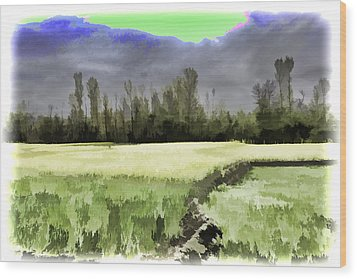 Mustard Fields In Kashmir Wood Print