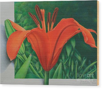 Orange Lily Wood Print by Pamela Clements