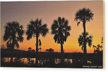 Wood Print featuring the photograph 4 Palms In After Glow by Richard Zentner