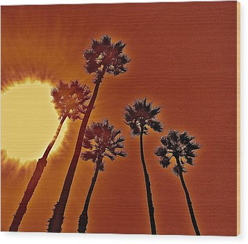 4 Palms N Sun Wood Print