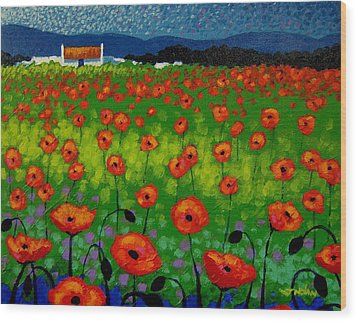 Poppy Field Wood Print by John  Nolan