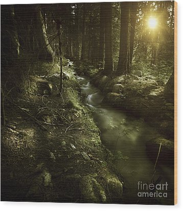 Small Stream In A Forest At Sunset Wood Print by Evgeny Kuklev