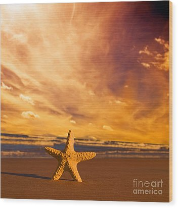 Starfish On The Beach At Sunset Wood Print by Michal Bednarek