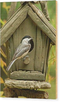 Usa, North Carolina, Guilford County Wood Print