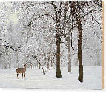 Winter's Breath Wood Print by Jessica Jenney