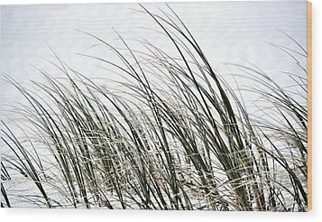 Dune Grass Wood Print by Werner Lehmann