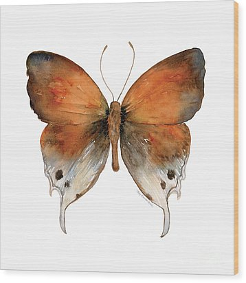 47 Mantoides Gama Butterfly Wood Print