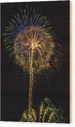4th July #13 Wood Print by Diana Powell