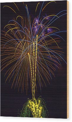 4th July #14 Wood Print by Diana Powell