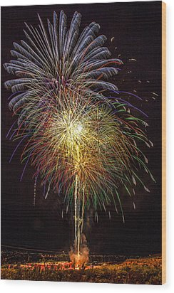 4th July #15 Wood Print by Diana Powell